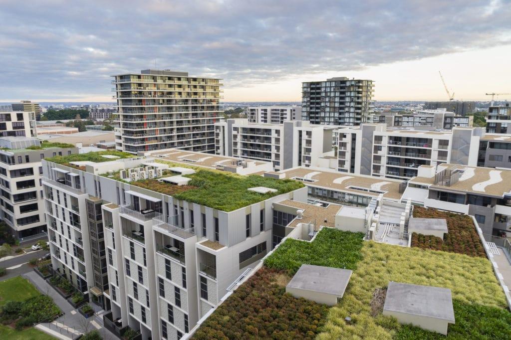 Etancheité toiture terrasse avec végétalisation