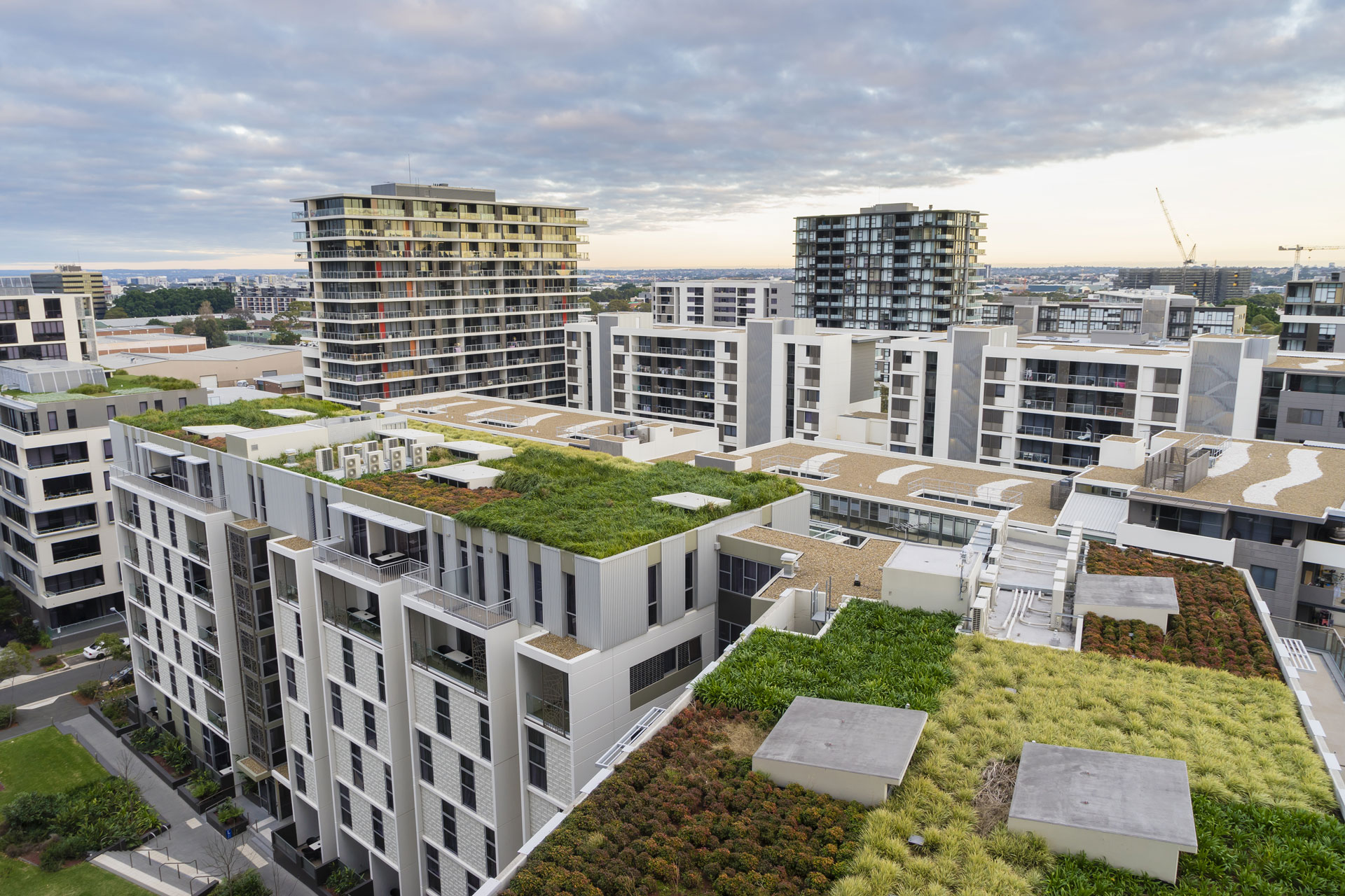 Insulation for green roofs
