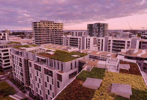 recommandations professionnelles UNEP toitures végétalisées