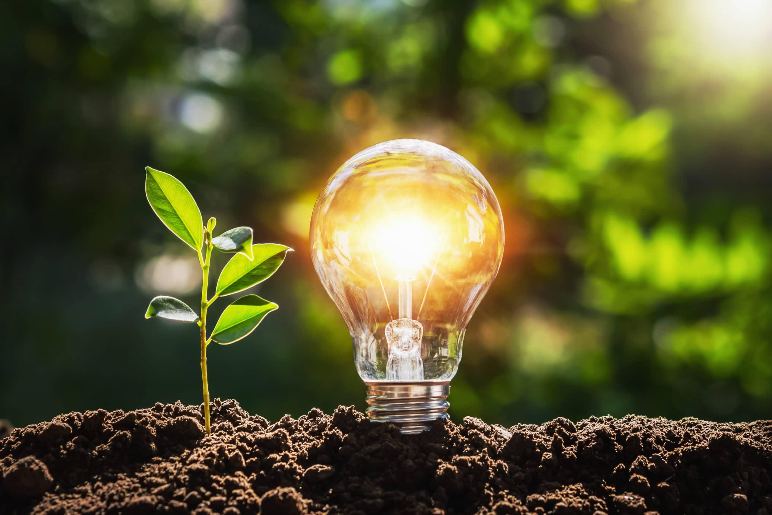 énergies renouvelables RE2020
